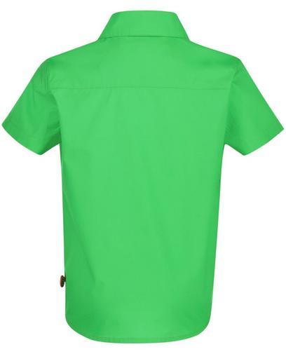 Chemise verte