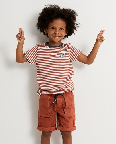 Gestreept T-shirt Samson