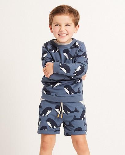 Blauwe sweater met allover print