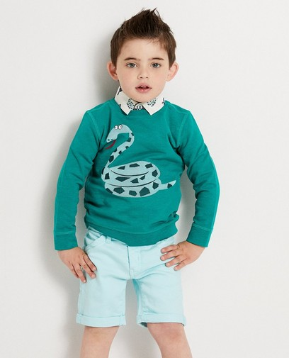 Groene sweater met slang Kaatje