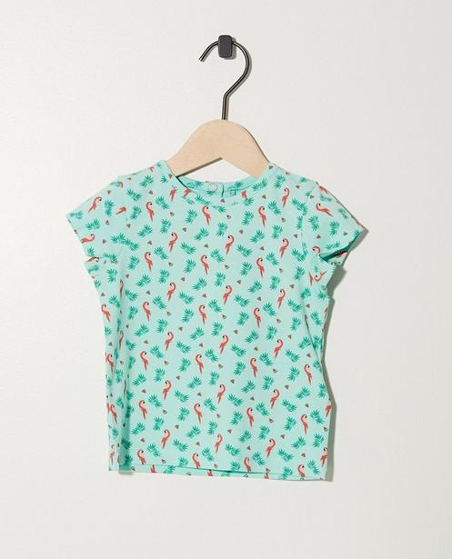 T-shirt vert en coton bio - imprimé intégral - JBC