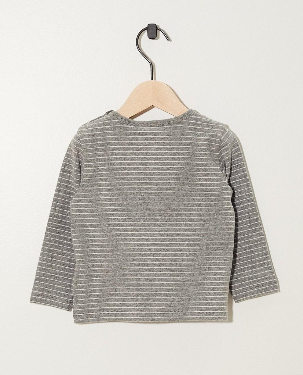 T-shirts - AO1 - Grijsgroene longsleeve van biokatoen