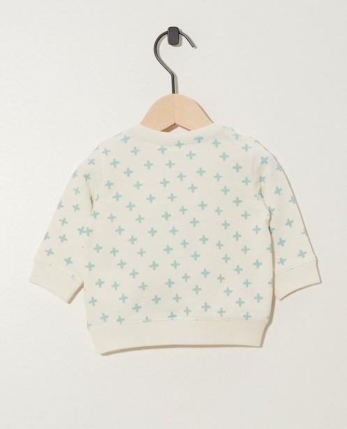 Sweaters - Blauwgroene sweater van biokatoen