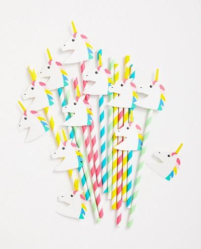 Rietjes verjaardag eenhoorn