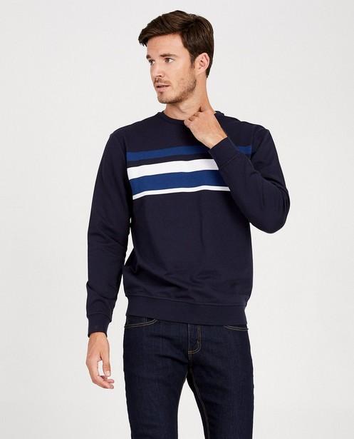 Sweats - navy - Sweat bleu rayé