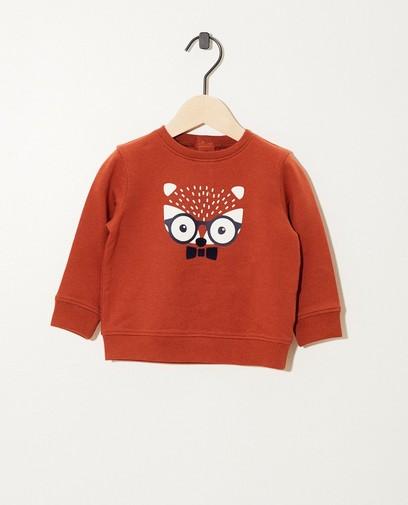 Terracotta sweater van biokatoen