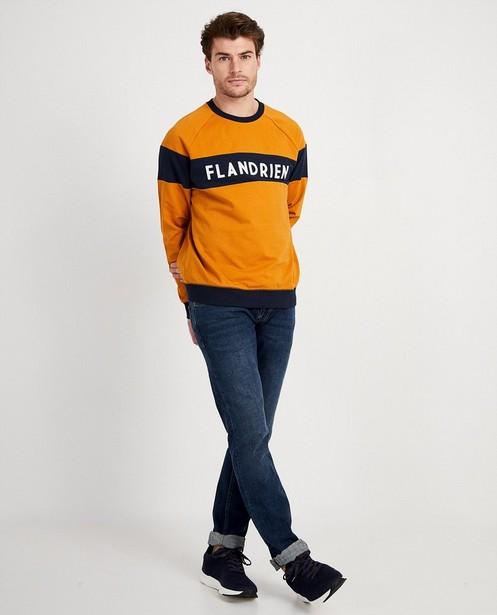 Blauwe sweater Flandrien Baptiste - met opschrift - JBC