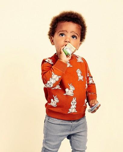 Grijze sweater met print Disney