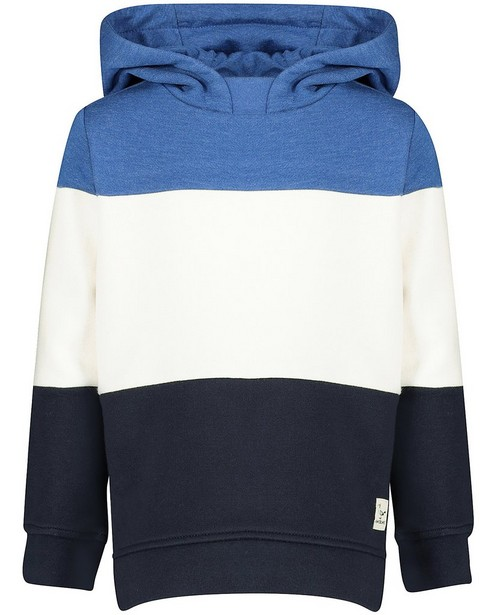 Hoodie bleu et blanc Vic le Viking - color block - Vic le Viking