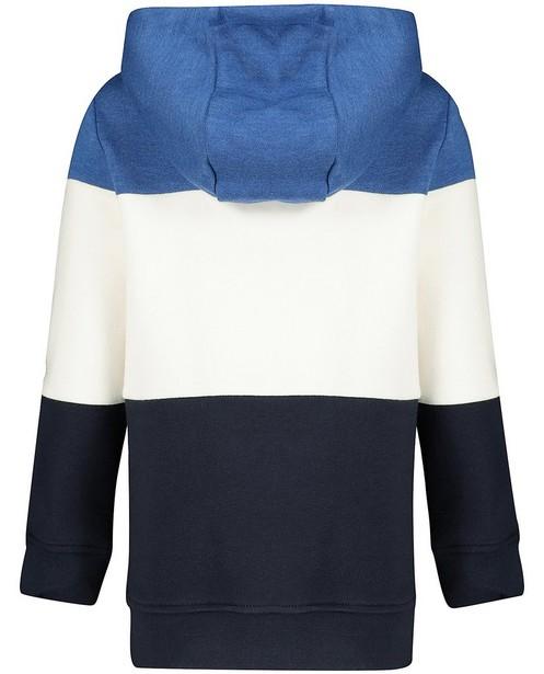 Sweats - Hoodie bleu et blanc Vic le Viking