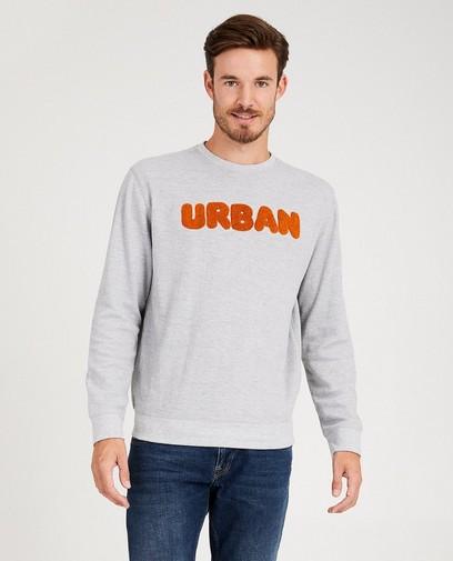 Grijze sweater met bouclé-print