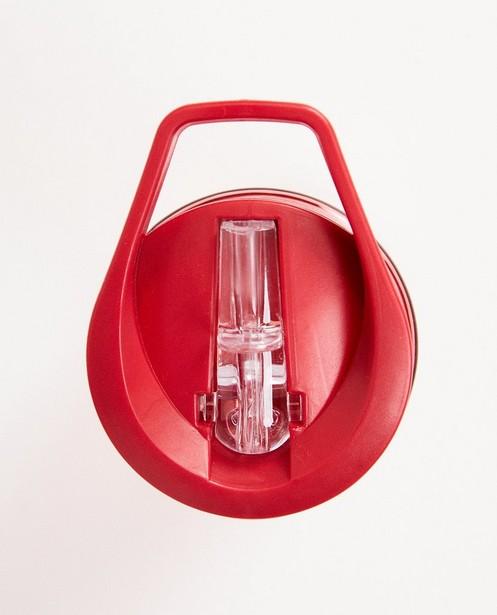 Gadgets - plum - Gourde rouge, imprimé de dinos