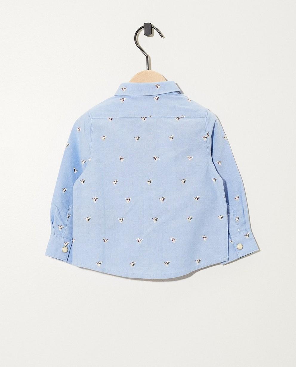 Chemises - AO4 -
