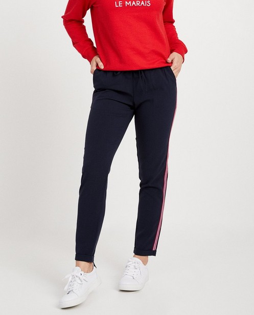 Pantalons - navy - Grijze broek met streep