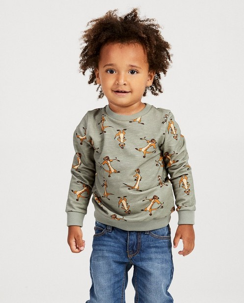 Sweater - AO1 -