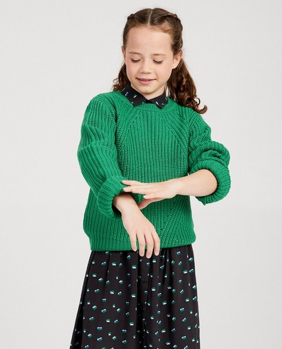 Groene gebreide trui