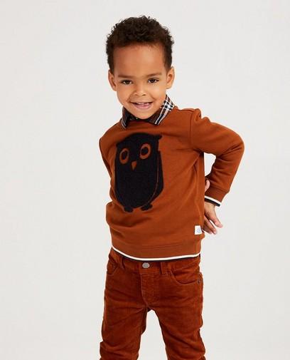 Roest sweater met uil Hampton Bays