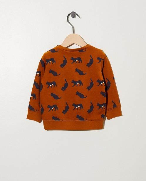 Sweaters - AO2 -