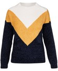 Truien - Gebreide trui met color block