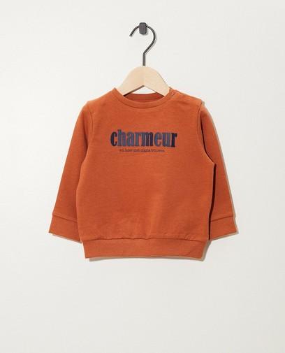 Roest sweater van biokatoen (NL)