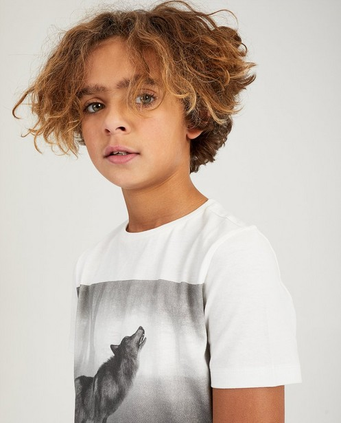 T-shirts - WTM -