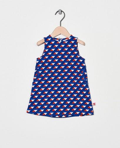 Blaues Kleid mit Print Froy & Dind