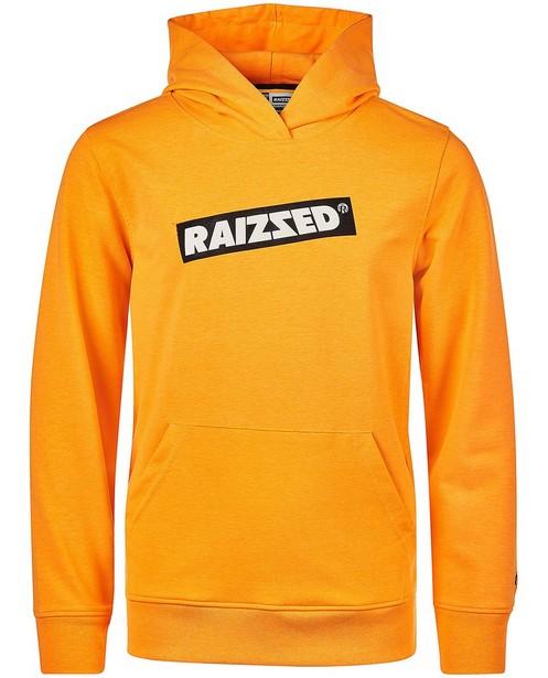 hoodie - null - Raizzed