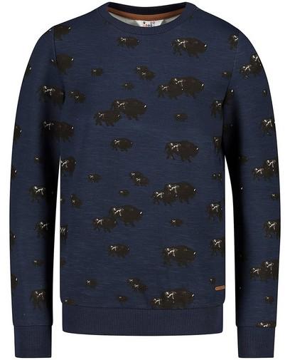 Blauwe sweater met print