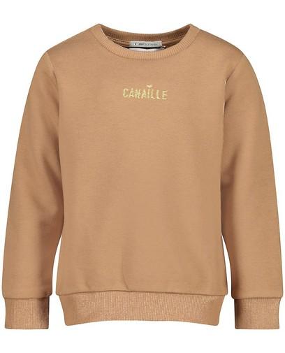 Bruine sweater met opschrift (FR)