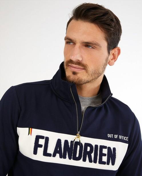 Sweaters - Blauwe sweater Baptiste